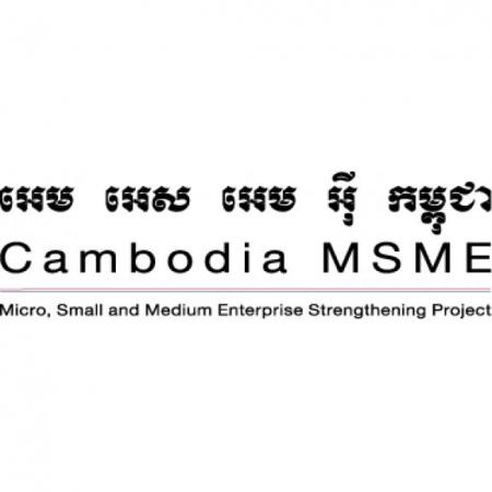 cambodia msme 2 bee project