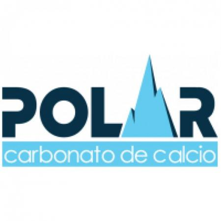 Polar Logo Vector
