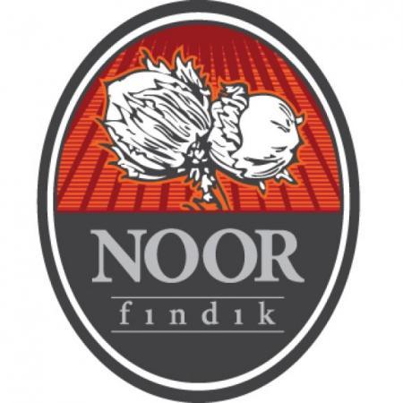 Noor Findik Logo Vector