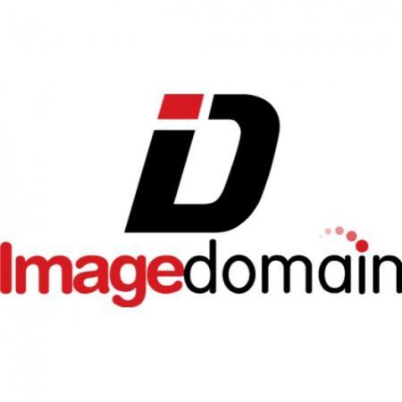 Image Domain Logo Vector