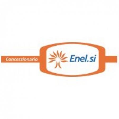 Enelsi Logo Vector