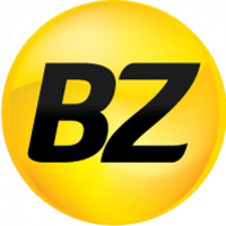 Bz Propaganda & Marketing Logo Vector