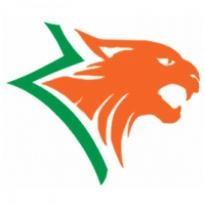 Lynx Logo Vector Download