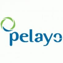 Pelayo Seguros Logo Vector Download