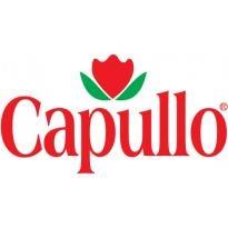 Capullo Logo Vector Download