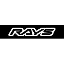 Rays Logo Vector Download