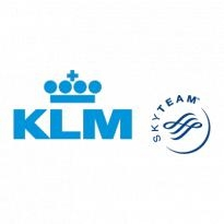 klm skyteam logo vector