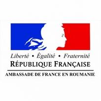 Ambassade De France En Roumanie Logo Vector Download