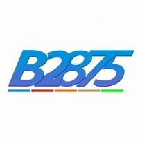 b2875 logo vector