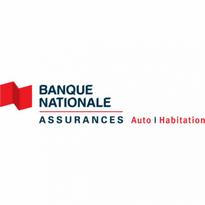 Banque Nationale Assurances Logo Vector Download