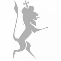 chiemgauer stahlstich manufaktur logo vector