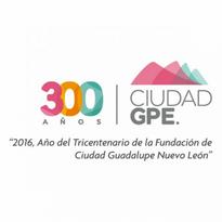 ciudad guadalupe nuevo leon logo vector