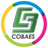Cobaes Logo Vector Download