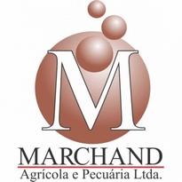 Marchand Logo Vector Download