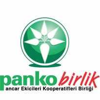 Panko Birlik Logo Vector Download