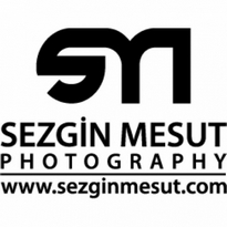 sezgin mesut logo vector
