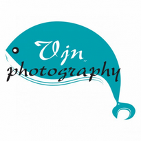 vjn photography logo vector