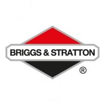 Briggs 038 Stratton Logo Vector Download